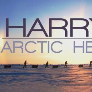 Harry's  Arctic Heroes (2011)